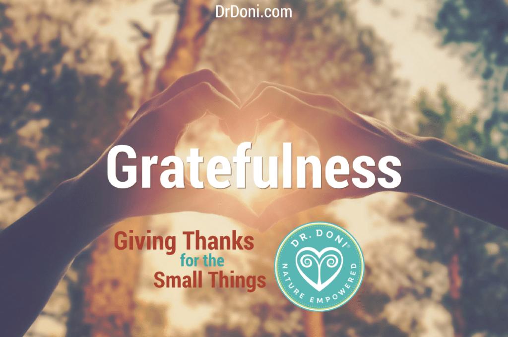 Thanksgiving holiday, grateful, thankfulness, giving thanks, stress, stress test, stress balance, hormones, naturopathy